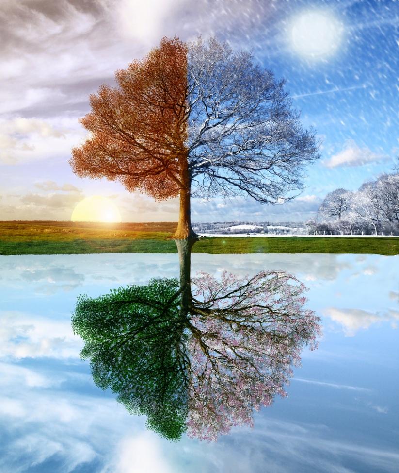 seasons (1)